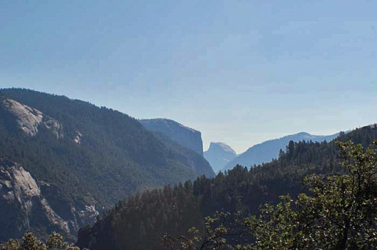 Half dome from Olmsted