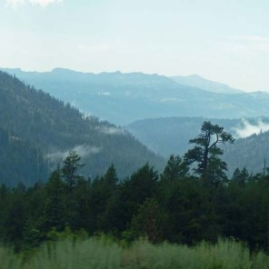 Stanislaus view