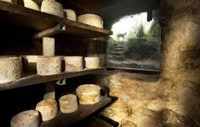 cheese cellar