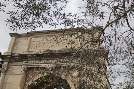 Titus Arch through olives
